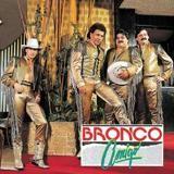 Amigo Bronco