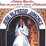 Paloma Querida