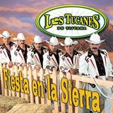 Fiesta En La Sierra