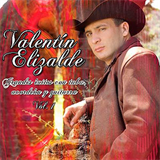 Grandes Exitos Con Tuba, Acordeon Y Guitarra Vol. 1
