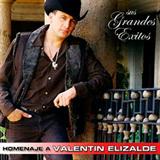Homenaje A Valentin Elizalde - Sus Grandes Exitos